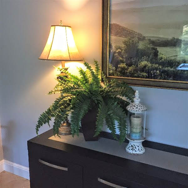 Potted Fern in foyer